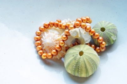 orange-pearls-with-seashells